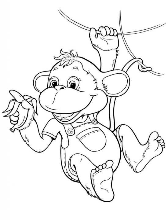 انواع نقاشی های زیبا و جدید میمون
