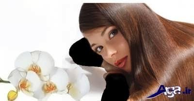 درمان کردن موی چرب با روش های طبیعی
