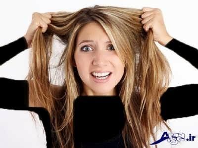 درمان کردن موهای چرب با روش های طبیعی