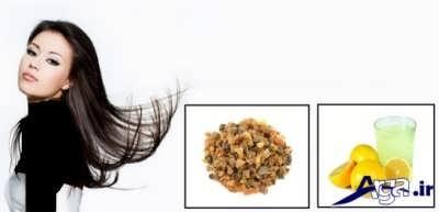 روش های طبیعی برای درمان چربی موها