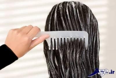 درمان کردن موهای چرب با روش های طبیعی و خانگی