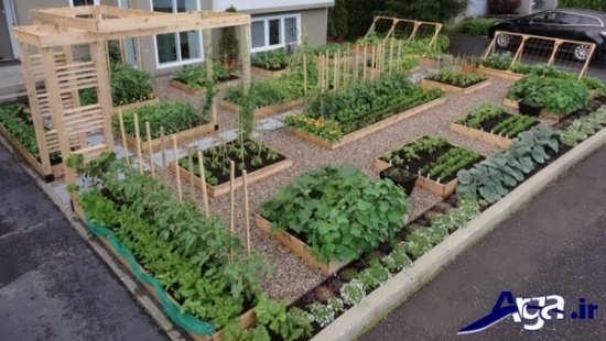 طراحی باغچه بزرگ حیاط