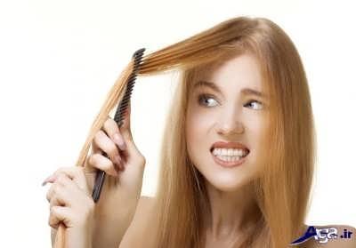 روش های درمان طبیعی ریزش مو