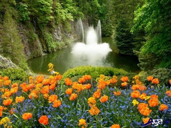 تصاویر زیبا و دیدنی طبیعت