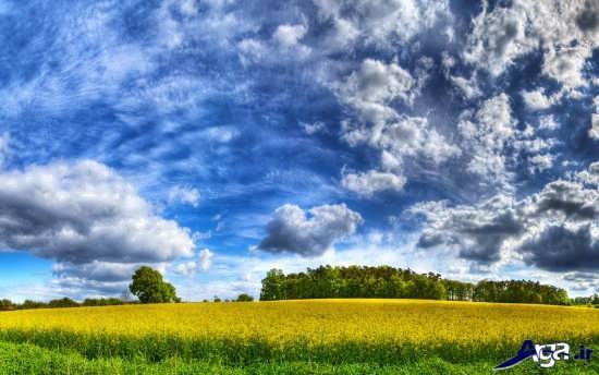 تصاویر زیبای طبیعت بهار