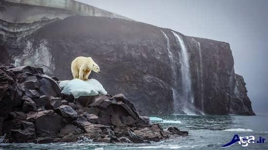 عکس های زیبا و جذاب از طبیعت