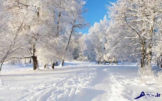 عکس های زیبا و جذاب زمستان