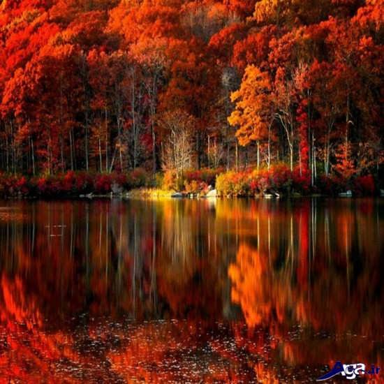 زیباترین عکس های طبیعت جهان