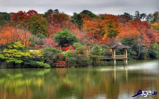 عکس های پاییزی طبیعت