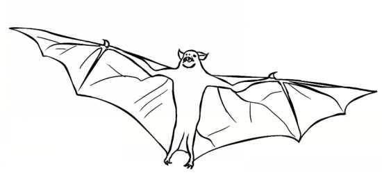 انواع طرح های رنگ آمیزی خفاش برای بچه ها