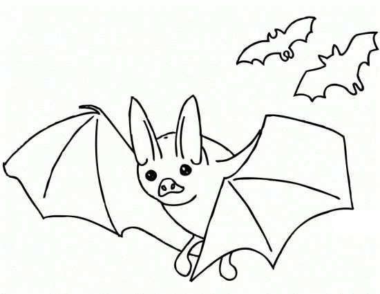 انواع نقاشی های مختلف از پرنده خفاش