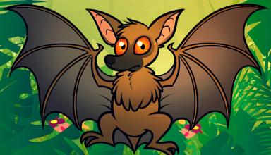 نقاشی خفاش برای رنگ آمیزی کودکان
