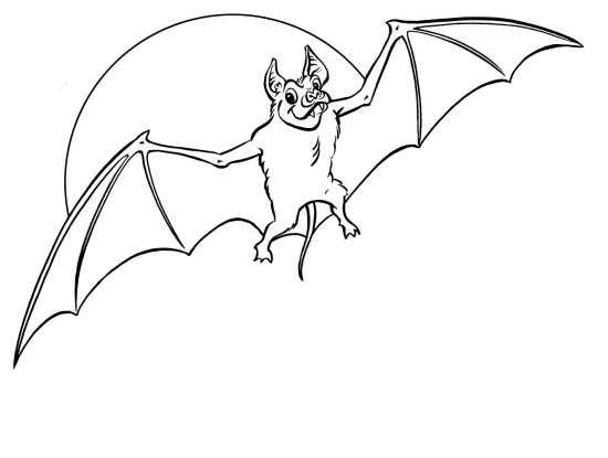 نقاشی خفاش با طرح های جذاب