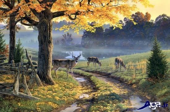 نقاشی رنگ روغن از طبیعت