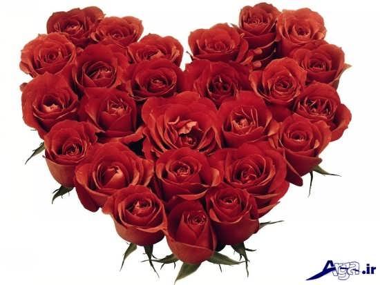 عکس دسته گل های عاشقانه