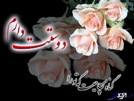 عکس گل های عاشقانه و احساسی