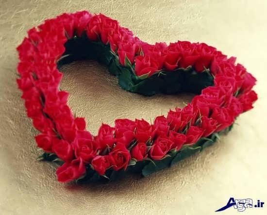 عکس گل های عاشقانه زیبا