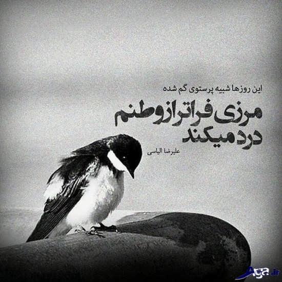 عکس پروفایل فاز سنگین
