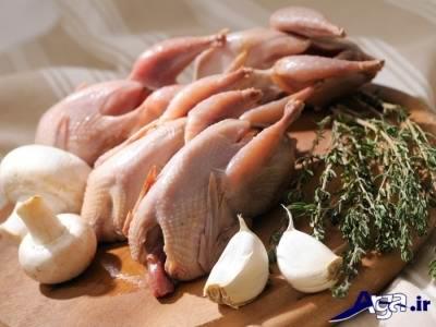 خواص گوشت بلدرچین برای کودکان