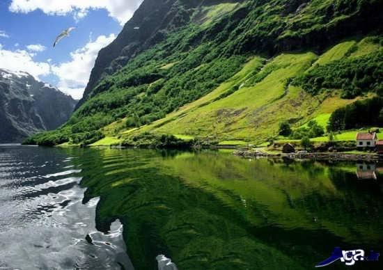 عکس مناظر زیبا و دیدنی جهان