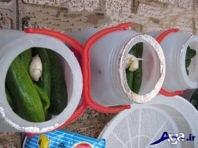 ریختن خیارشور ها در ظرف ترشی
