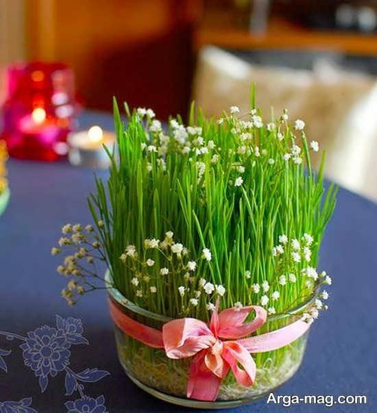 سبزه عیدنوروز با تزیین زیبا