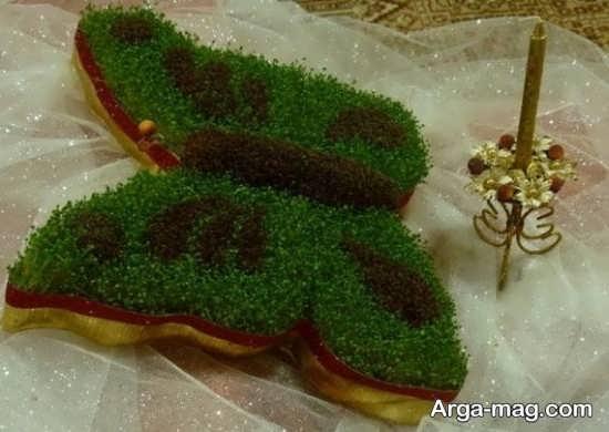 کاشت سبزه هفت سین با عدس