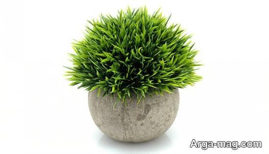 سبزه هفت سین شیک با عدس