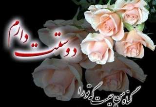 تصاویر گل های عاشقانه و بسیار زیبا