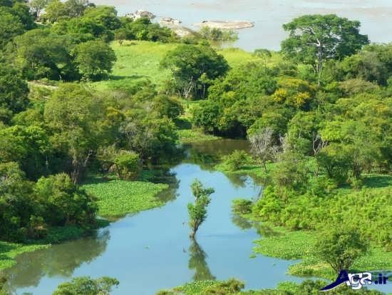 عکس رودخانه های زیبا و تماشایی سراسر جهان
