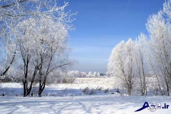 عکس از مناطق برفی