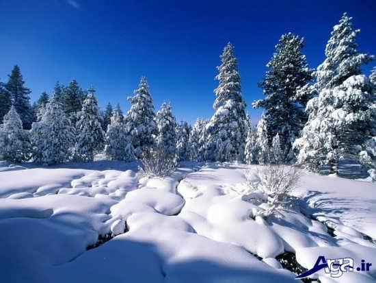 منظره برفی فوق العاده زیبا