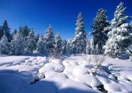 عکس منظره های برفی
