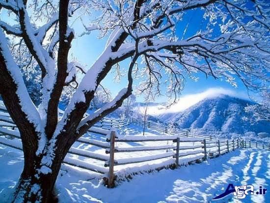 عکس های منظره های زمستانی بسیار زیبا
