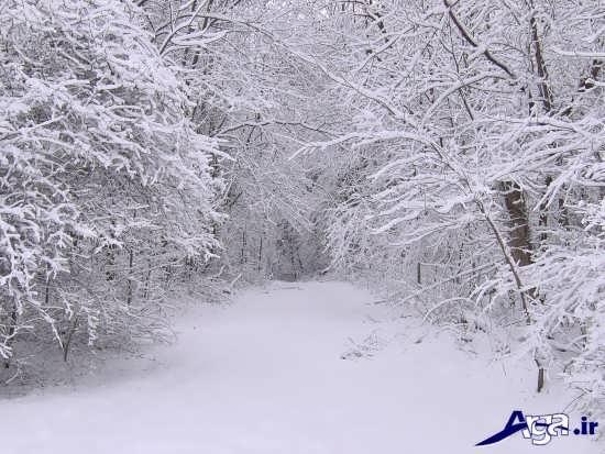 عکس برف زیبا