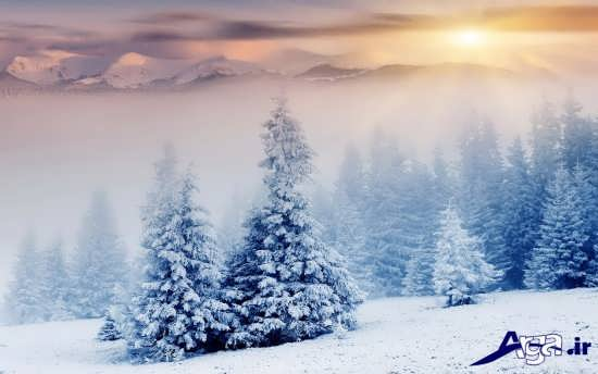عکس منظره های زمستانی