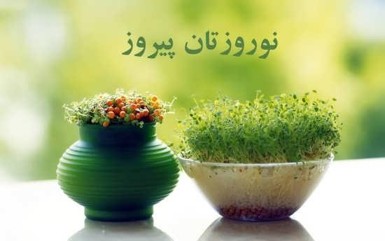 عکس زیبای نوروزی برای پروفایل