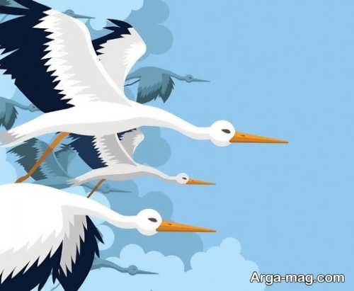 طراحی جدید پرنده لک لک