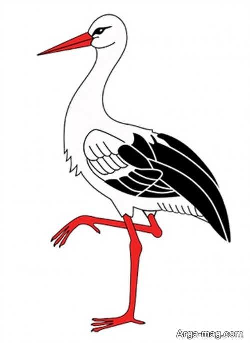 طراحی باحال پرنده لک لک