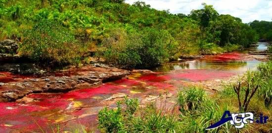 عکس شگفتی های طبیعت و رودخانه