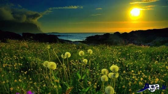 منظره های بهاری زیبا و تماشایی