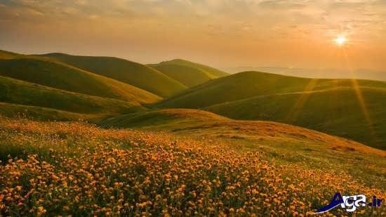 عکس بهاری زیبا و تماشایی