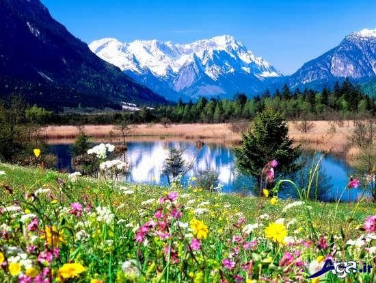 تصاویر زیبای بهار