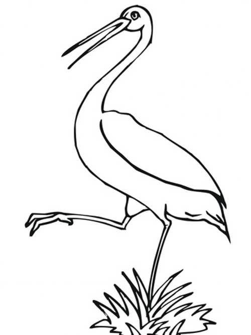 نقاشی لک لک بانمک