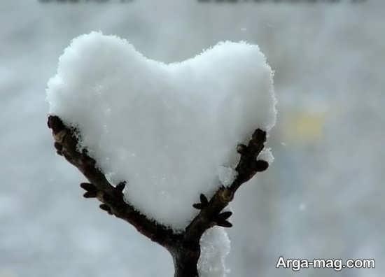 عکس خاص قلب یخی