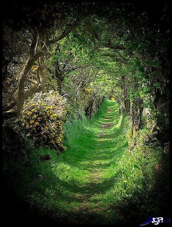 عکس منظره زیبا در ایرلند