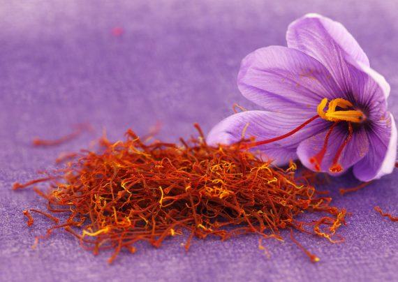 خواص گل زعفران