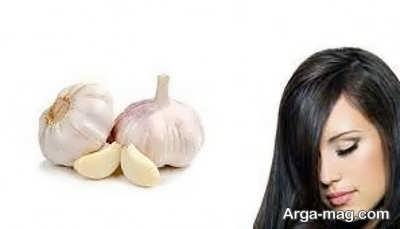 فواید سیر برای مو
