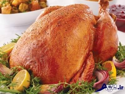 موارد مصرف گوشت بوقلمون