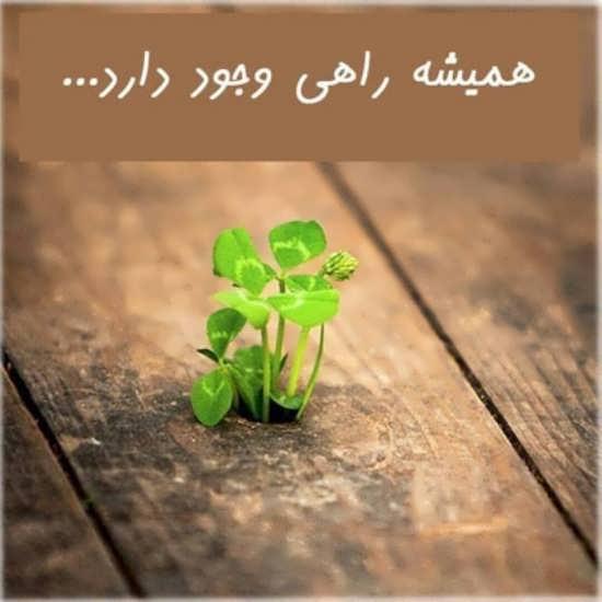 عکس نوشته زیبا درباره موفقیت